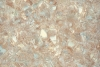 l403 mozaika