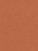 abrikos zy010